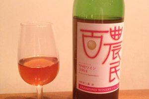 bottle2004
